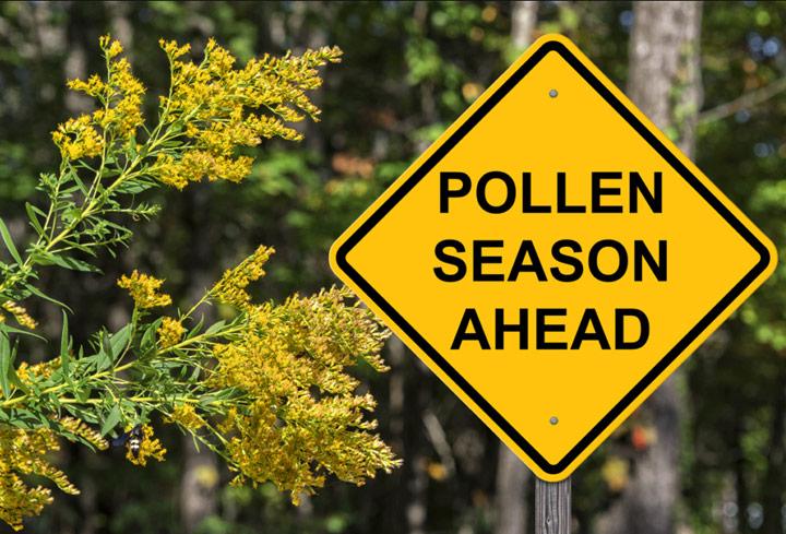 Sign of Pollen Season Ahead